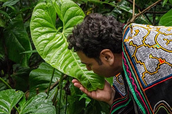 Gerardo Laempe im kolumbianischen Regenwald
