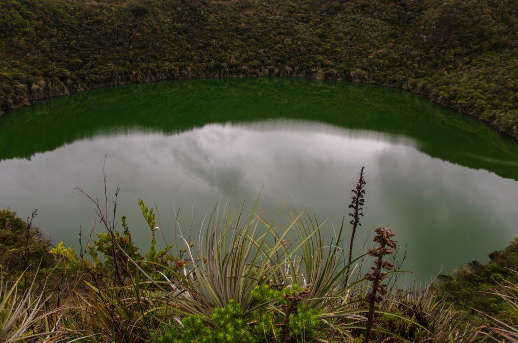 web-fb-YRP_0277-lagune-pflanzenwelt3200