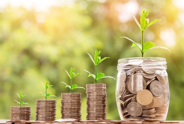 Geld Wachstum