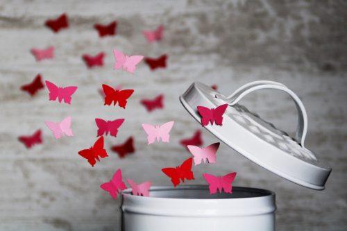 Butterfly 4061336 1920